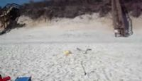 Как поймать баклана (видео)