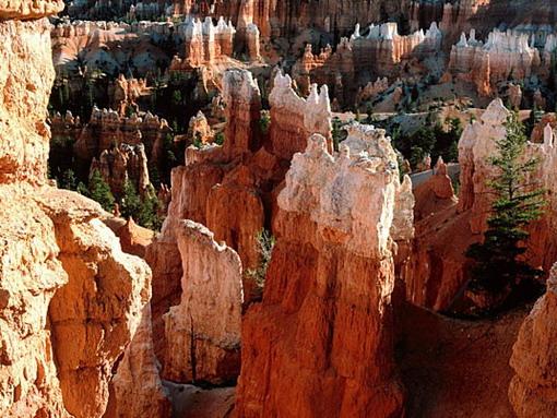 Красивые фото Американских каньонов (15 фото)
