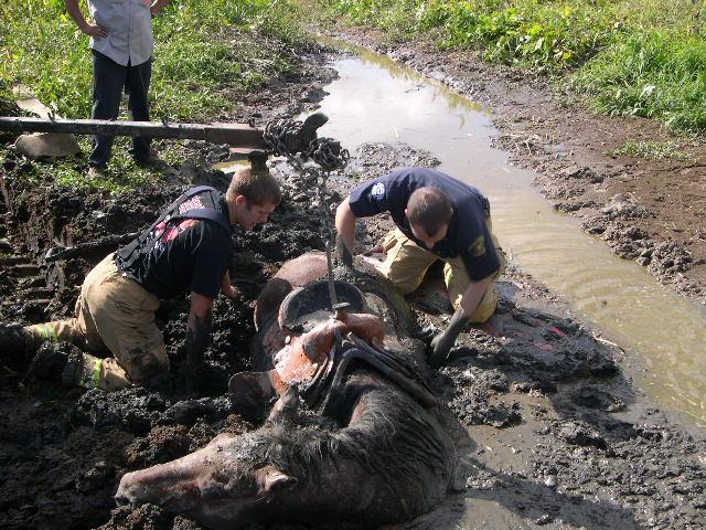 Как вытаскивали забуксовавшую лошадку (4 фото)