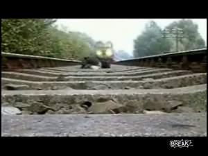 Парень лёг под поезд. ППЦ!