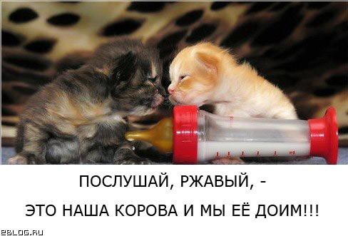 Делёжка :)))