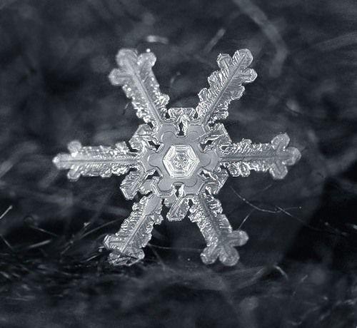 Снежинки, 25 фото.