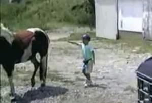 Ыыы... лошадка
