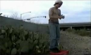 Прыжок в заросли кактусов О_О