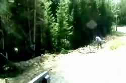 Суровые лесорубы